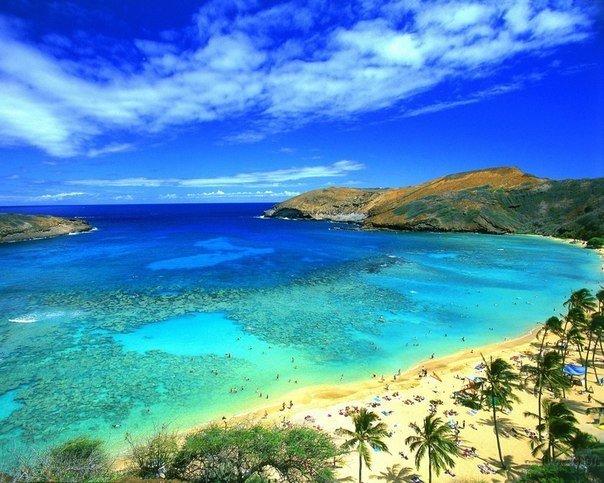 Самый солнечный пляж мира, голые распутные бабы частное любительское видео